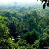 Si Satchanalai Parque Nacional