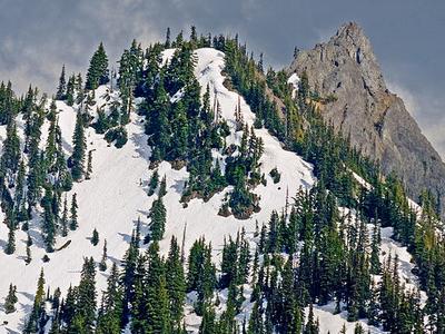 Snow In The Hurricane Ridge