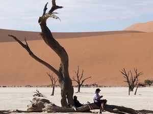 Namibia Special Getaway Safari Photos