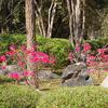 Sri Nakarins Parque