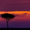 Sunrise At Maasai Mara
