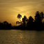 Sunset On The Backwaters, Alleppey