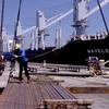 Steel Loading On The Wharf