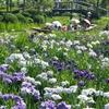 Suigō Sawara Aquatic Botanical Garden