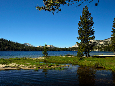 Tenaya Lake View