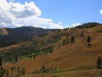 The Bannock Trail