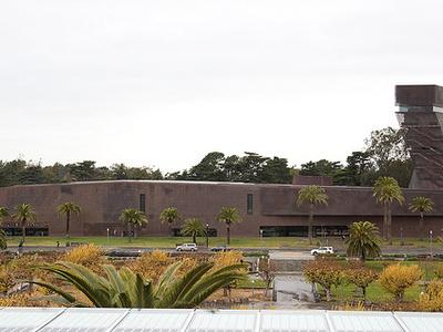 The De Young Museum Building View