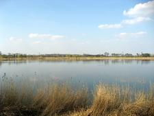 The Lednice Lake