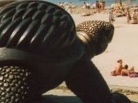 """La escultura """"Tortuga"""""""