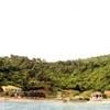 The Vang Island