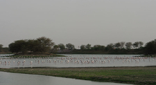 Thol Lake Emmanuel Dyan