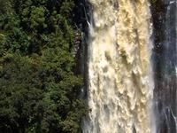 Thomson's Falls