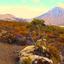 Tongariro Northern Circuit