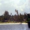 Top Tourist Attractions In Mafia Island