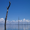 Tourist Attractions In Brokopondo Reservoir