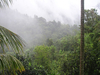 Tourist Attractions In El Yunque Rain Forest