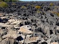 Tsingy de Bemaraha Strict Nature Reserve