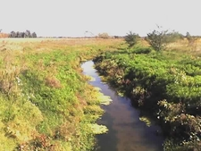 Arroyo De La Cañada Pantanosa