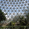 Tropical Display Dome Of The Botanical Garden