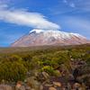 8 Days Kilimanjaro The Machame Route