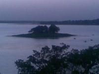 Bhoj Wetland