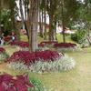 Vacation Home At Boquete - Panama