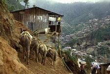 View Ecuador Nambija