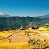 Village In Nepal Himalayas
