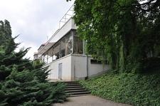 Villa Tugendhat Brno Tree