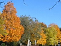 Vale Cemetery and Vale Park