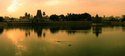 View Of The Temple Tank At Dawn