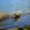 Walter Wirth Lake
