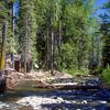 Ward Creek Near Tahoe City