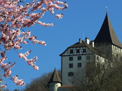 Weinfelden Castle