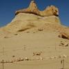 Wadi Al Hitan