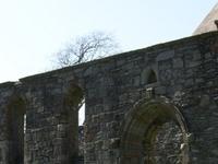 Whithorn Priory
