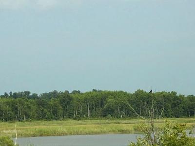 Wicomico River Potomac River