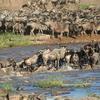 Safari Circuito Norte de Tanzania 4 días