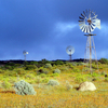 Windmills In Namaqualand