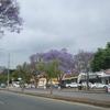 White River Town