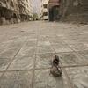 Yingxiu Street Nick Kozak
