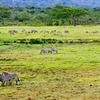 Arusha Safari Package