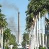 View Of A Zacatepec De Hidalgo Stree