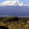 Climbing Mt. Kilimanjaro Marangu Route Itinerary