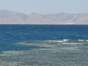 Fishing Trip from Hurghada Photos
