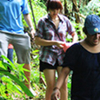 Full Day Karen Elephant Safari From Hotel In Chiang Rai City Only (TCEIT02)
