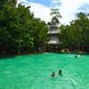 Full Day Krabi Rainforest Discovery
