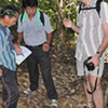 Full Day The Old Opium Trail on Doi Pui Tour From Hotel In Chiang Mai City Only (TTAC05)