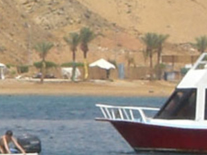 Glass Bottom Boat Trip in Sharm El Sheikh Photos