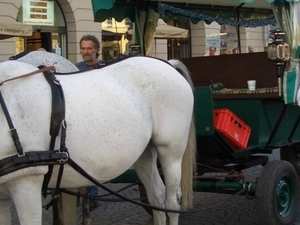 Horse Carriage Tour through Munich Photos